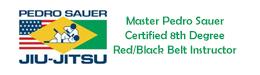 Pedro Sauer Brazilian Jiu Jitsu Association