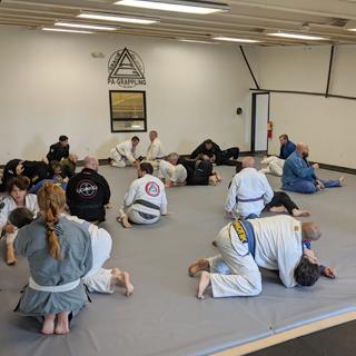 PA-Grappling - Gracie Brazilian Jiu-Jitsu, Kid's Martial Arts, Self Defense